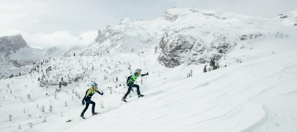 Rozdelenie skialp lyží -sportby.sk